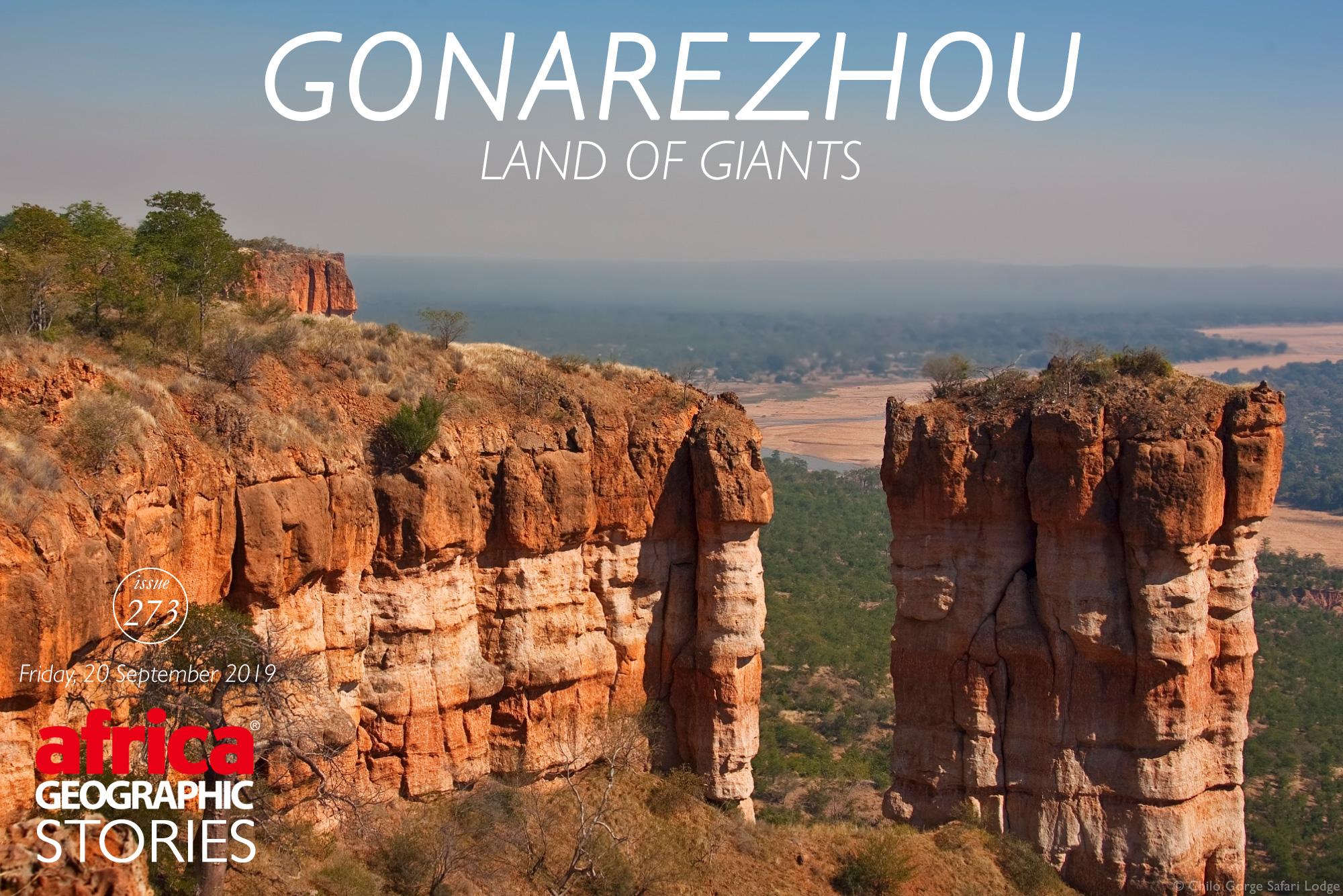 Gonarezhou – Land of Giants - Africa Geographic Magazine