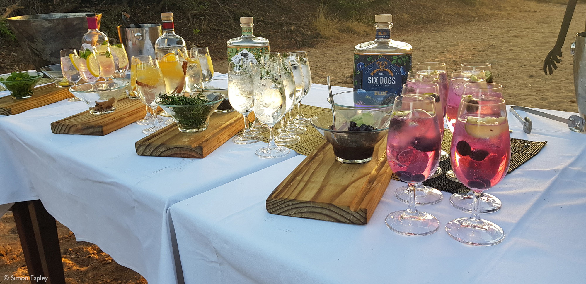 Selection of gin and tonics, Klaserie Private Nature Reserve, South Africa