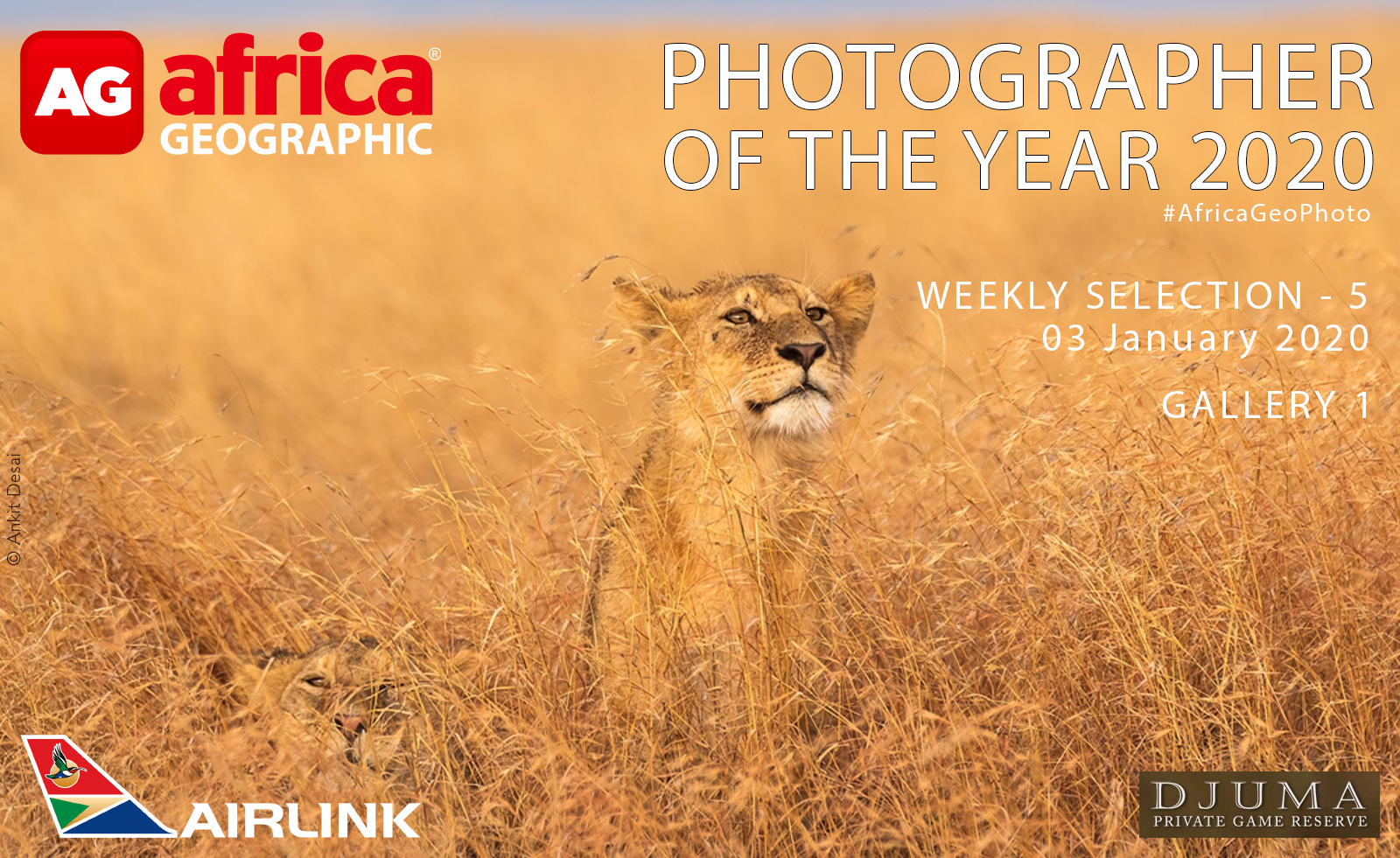 WEEK 5 2020 Photographer of the Year 2020 Weekly Selection