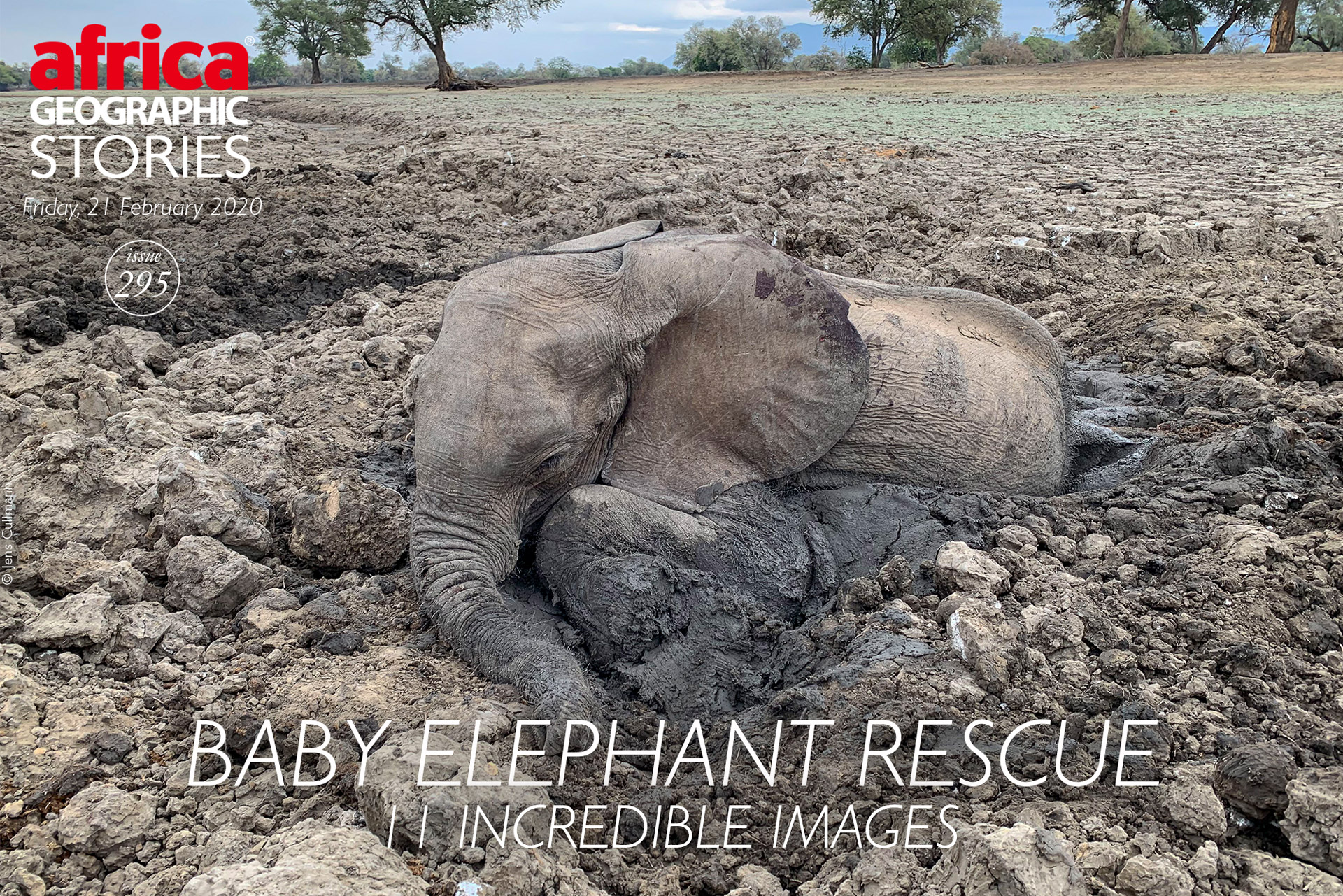 Baby elephant rescue – 11 incredible images - Africa Geographic Magazine