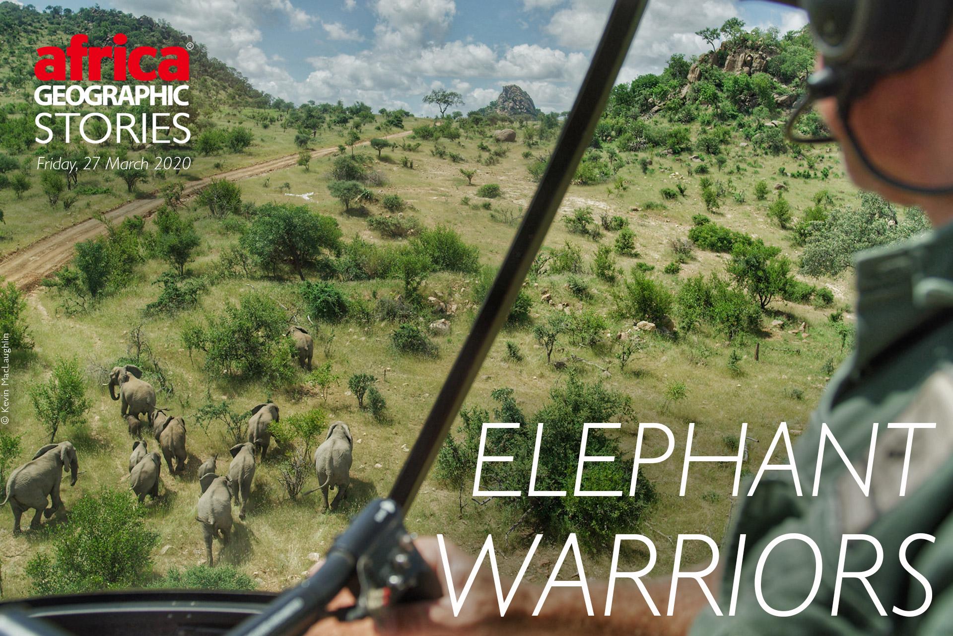 Elephant Warriors - Africa Geographic Magazine